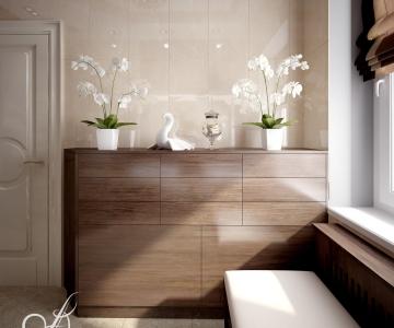Дизайн дома, Санузел род 4